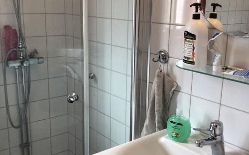 Dusch med tvättrum, tvättmaskin/torktumlare