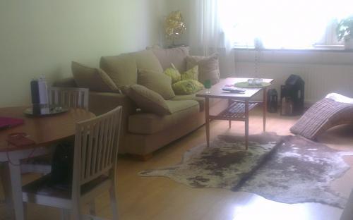 Möblerat vardagsrum