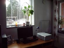 Söderfönster